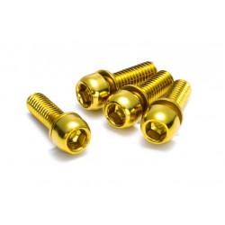 REVERSE - śruby do hamulców - M6x18 złote